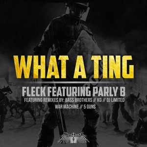 FLECK - What A Ting