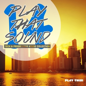 VARIOUS - Play That Sound: Tech & Progressive House Collection Vol 14