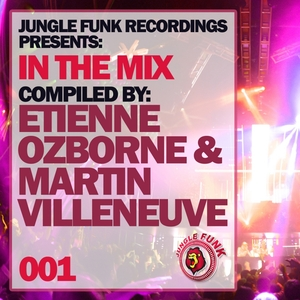 VARIOUS - In The Mix Vol 001 Compiled By Etienne Ozborne & Martin Villeneuve