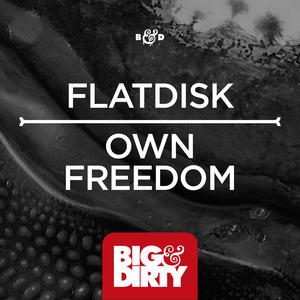 FLATDISK - Own Freedom