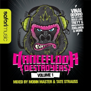 MOBIN MASTER/TATE STRAUSS/VARIOUS - Dancefloor Destroyers Volume 1 (unmixed tracks)