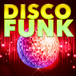 VARIOUS - Hitmaster Disco Funk Vol 2