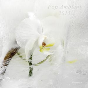 VARIOUS - Pop Ambient 2015