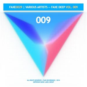 VARIOUS - Faxe Deep Vol 009
