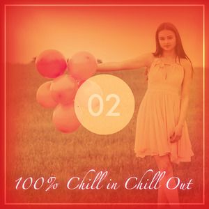 VARIOUS - 100 Chill In Chill Out Vol 2