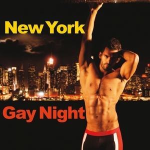 VARIOUS - New York Gay Night