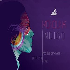 MONOLINK - Indigo
