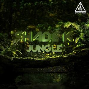 SHADE K - Jungle