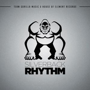 VARIOUS - SilverBack Rhythm