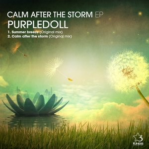 PURPLEDOLL - Calm After The Storm