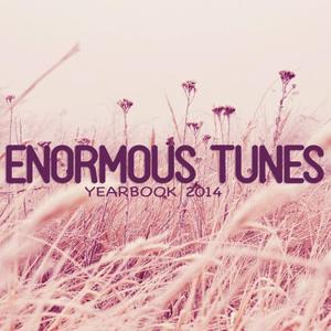VARIOUS - Enormous Tunes: Yearbook 2014