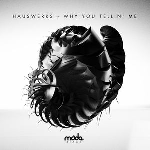 HAUSWERKS - Why You Tellin' Me