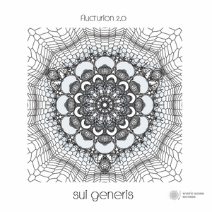 FLUCTURION 2 0 - Sui Generis