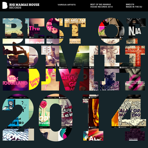 PATTI, Maurizio/VARIOUS - Best Of Big Mamas House Records 2014 (Deluxe Version)
