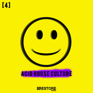 VARIOUS - Acid House Culture Vol 4