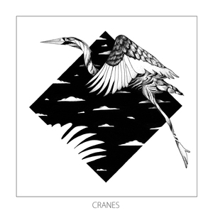 MONKEY SAFARI - Cranes