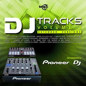 VARIOUS - DJ Tracks Vol 2