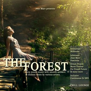 VARIOUS - The Forest Chill Lounge Vol 6 Deep Moods Music With Smooth Ambient & Chillout Tunes