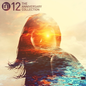 VARIOUS - Intrigue 12: The Anniversary Collection