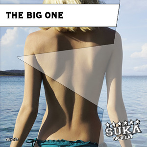 VARIOUS - The Big One