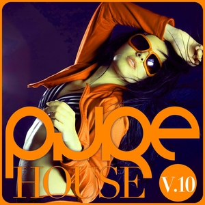 VARIOUS - Pure House Vol 10