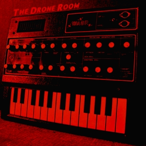 DRONE ROOM, The - Wasp