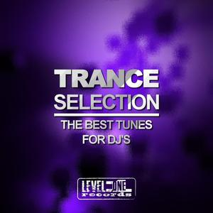 VARIOUS - Trance Selection (The Best Tunes For DJ's)