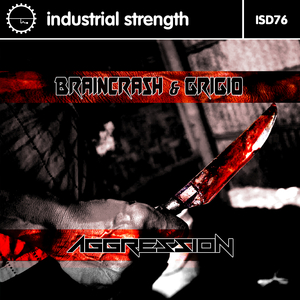 BRAINCRASH/GRIGIO/LENNY DEE - Aggression