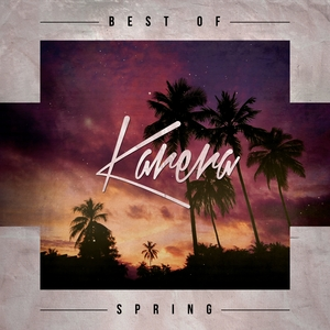 VARIOUS - Best Of Spring