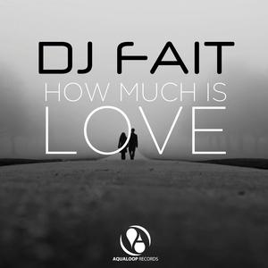 DJ FAIT - How Much Is Love