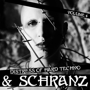 VARIOUS - Distress Of Hard Techno & Schranz Volume 4