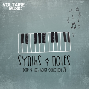 VARIOUS - Synths & Notes 22