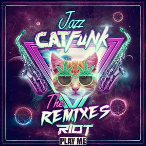 RIOT - Jazz Cat Funk (remixes EP)