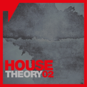 VARIOUS - House Theory Vol 2 (unmixed tracks)