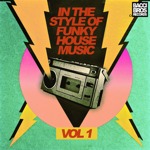 VARIOUS - In The Style Of Funky House Music Vol 1