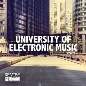 VARIOUS - University Of Electronic Music Vol 2