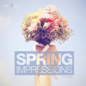 VARIOUS - Spring Impressions Vol 3