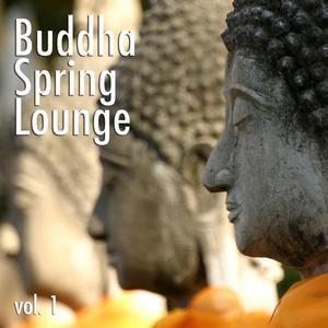 VARIOUS - Buddha Spring Lounge Vol 1
