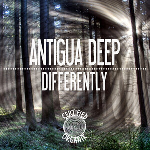 ANTIGUA DEEP - Differently