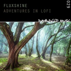 FLUXSHINE - Adventures In Lofi