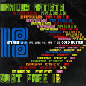 VARIOUS - Bust Free 18