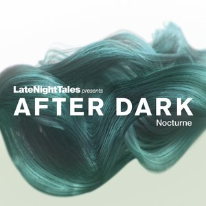 VARIOUS - After Dark Nocturne (unmixed tracks)