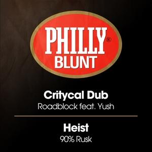 CRITYCAL DUB/HEIST - Roadblock