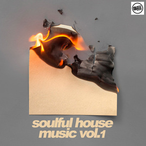VARIOUS - Soulful House Music Vol 1