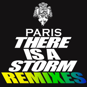 PARIS - There Is A Storm (remixes)