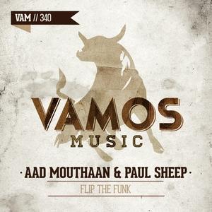 AAD MOUTHAAN/PAUL SHEEP - Flip The Funk