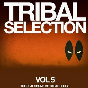 VARIOUS - Tribal Selection Vol 5