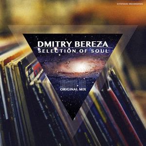 BEREZA, Dmitry - Selection Of Soul