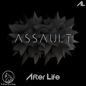 AFTERLIFE - Assault