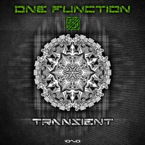ONE FUNCTION - Transient